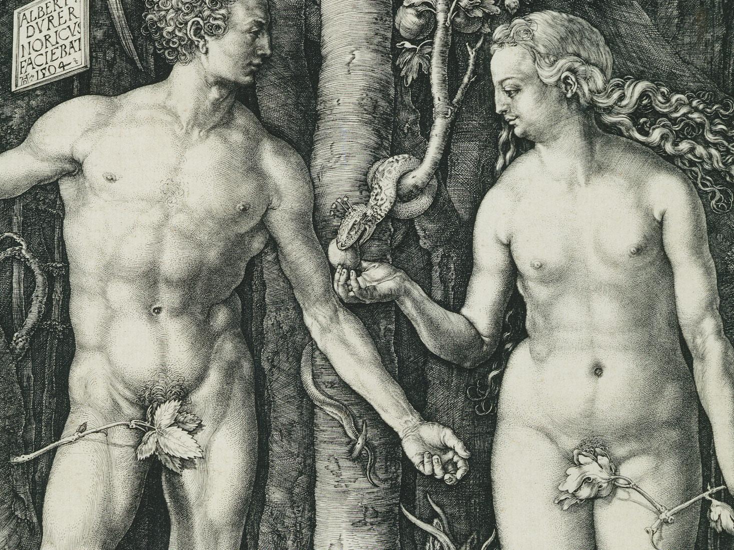 Catégories sexuelles